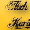 img/header/film/fluch-der-karibik.jpg